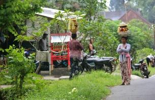 Balinese Women in Street, Ubud, Bali, Indonesia