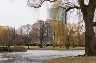 Boston Common, Boston, Dec 2013