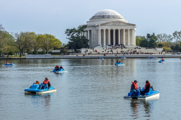Jefferson Memorial in Springtime
