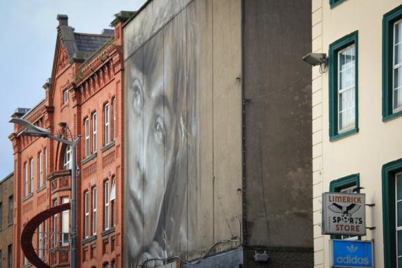 MLYNN_2014_Ireland_Limerick_LRIBD7
